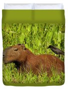 Capybara And Smooth Billed Ani Duvet Cover
