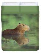 Capybara Wading Pantanal Brazil Duvet Cover