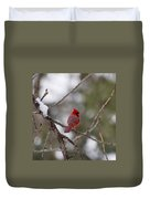 Cardinal - A Winter Bird Duvet Cover