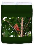 Cardinal Bird Baby Duvet Cover
