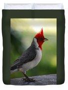 Cardinal Bird Duvet Cover