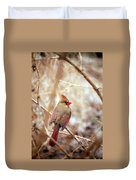 Cardinal Birds Female Duvet Cover