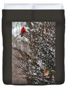 Cardinal Couple In Evergreen Duvet Cover
