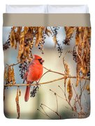 Cardinal In The Pokeberries Duvet Cover