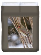 Cardinal Pictures 50 Duvet Cover