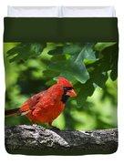 Cardinal Red Duvet Cover