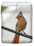 Cardinal Young Female Duvet Cover