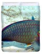 Caribbean Stoplight Parrot Fish In Rainbow Colors Duvet Cover