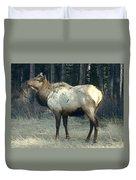 Elk Side Profile - Banff, Alberta Duvet Cover