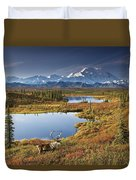 Caribou On Tundra In Denali Duvet Cover