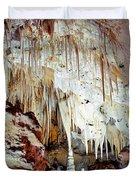 Carlsbad Caverns Duvet Cover