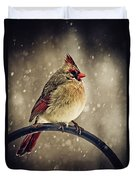 Carolina Cardinal Duvet Cover