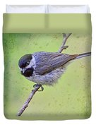 Carolina Chickadee On Angled Perch Duvet Cover