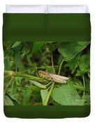 Carolina Locust Duvet Cover