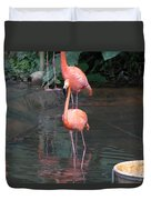 Cartoon - A Flamingo In The Small Lake In Their Exhibit In The Jurong Bird Park Duvet Cover