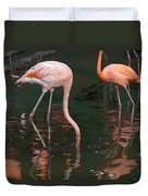 Cartoon - A Flamingo With Its Head Under Water In The Jurong Bird Park Duvet Cover