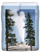 Castle Geyser Yellowstone Np Duvet Cover