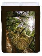 Castle Rock State Park Bolder Duvet Cover