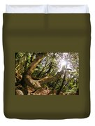 Castle Rock State Park Branch To The Sun Duvet Cover