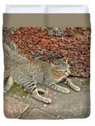 Cat At Wat Mahathat In 13th Century Sukhothai Historical Park-th Duvet Cover