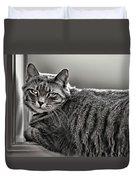 Cat In Window Duvet Cover