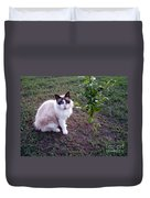 Cat 'n Orange Tree Duvet Cover