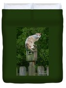 Cat Perched On A Bird House Duvet Cover