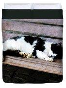 Cat Sleeping On Bench Duvet Cover