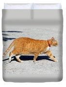 Cat Walk Duvet Cover