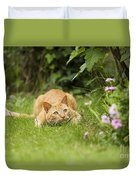 Cat Watching Prey Duvet Cover