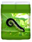 Catalapa Sphinx Caterpillar Duvet Cover