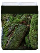 Cataracts Canyon Mossy Log  Duvet Cover
