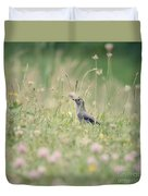 Catbird In The Wildflowers Duvet Cover