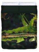 Caterpillar Tam Dao Np Vietnam Duvet Cover
