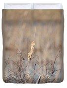 Cattail Gold Duvet Cover