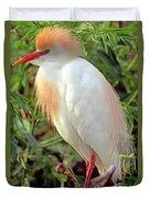 Cattle Egret Adult In Breeding Plumage Duvet Cover