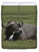 Cattle Egret With Cape Buffalo Duvet Cover