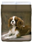 Cavalier King Charles Spaniel Dog Lying Duvet Cover