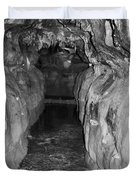 Cave Entrance Black And White Duvet Cover