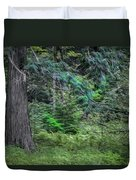 Cedar Along The Trail Of Cedars Glacier National Park Painted Duvet Cover