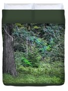 Cedar Along The Trail Of Cedars Glacier National Park  Duvet Cover