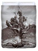 Cedar Landscape Duvet Cover