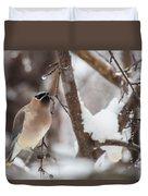 Cedar Waxwing In Winter Duvet Cover