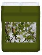 Cedar Waxwing Pictures 15 Duvet Cover