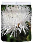 Centaurea Named The Bride Duvet Cover