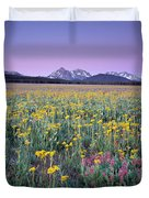 Central Idaho Color Duvet Cover