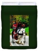 Central Park Carriage Duvet Cover
