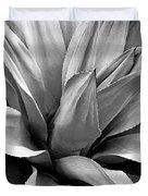 Century Plant I V Duvet Cover