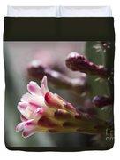 Cereus Hexagonus Pink Duvet Cover