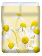 Chamomile Flowers Close Up Duvet Cover